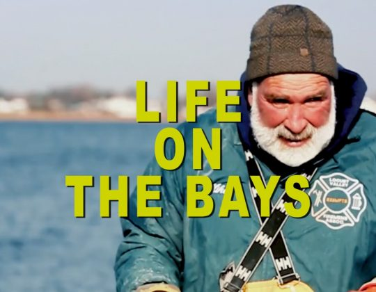Life On The Bays